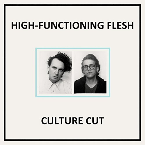High Functioning Flesh Culture Cut CD Cover