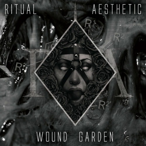 Ritual Aesthetic Cover