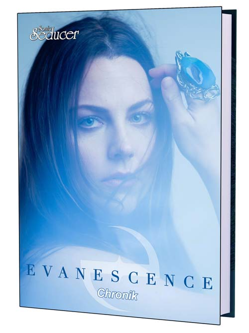 evanescence chronik buch biographie