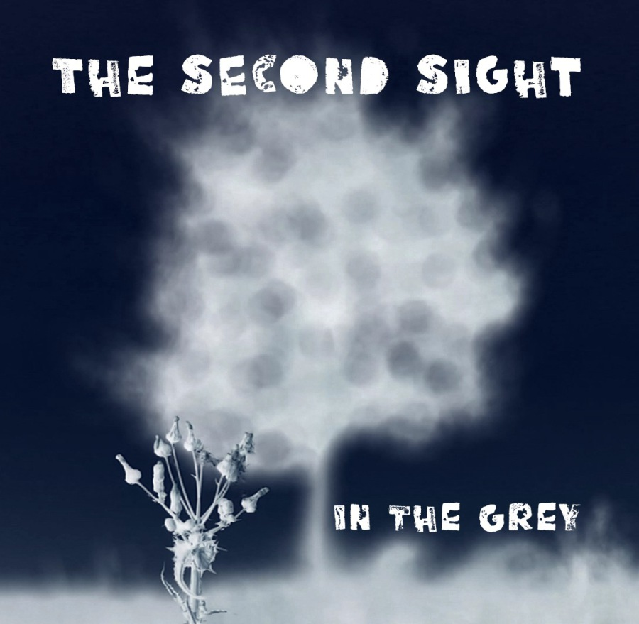 the second sight in the grey cover